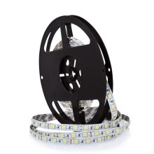 Tira LED 5m LED/45W/12V IP20 branco